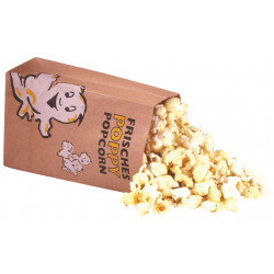 Neumärker Popcorntüten Poppy Eco 3 Liter 500 Stk.